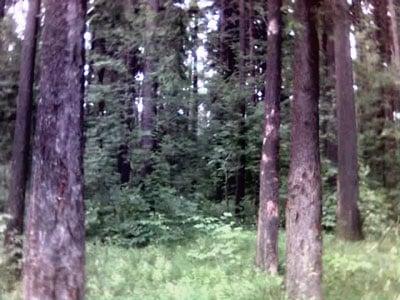10 07 05 2001 - Москва-1: прибытие