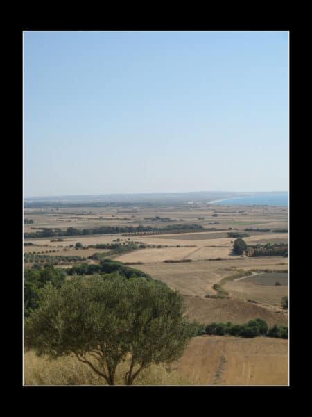 IMG 1466 copy 450x600 - Вернулся с Кипра