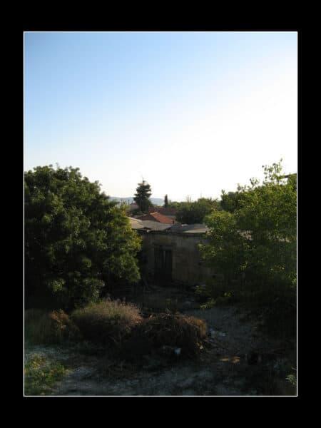 IMG 1482 copy3 450x600 - Вернулся с Кипра