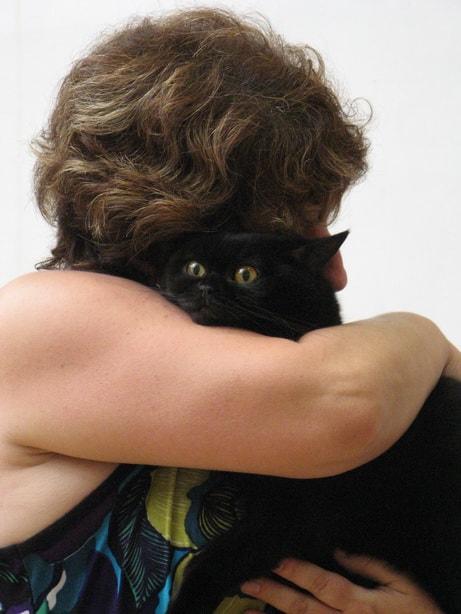 14693 original - Выставка кошек 2010