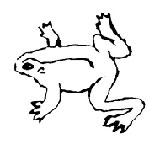 GrundikSlava frogs Outsider Noesh 2, Qube, Frogs