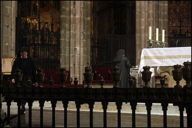 IMG 2470 - Кафедральный собор Барселоны, или 13 белых гусей