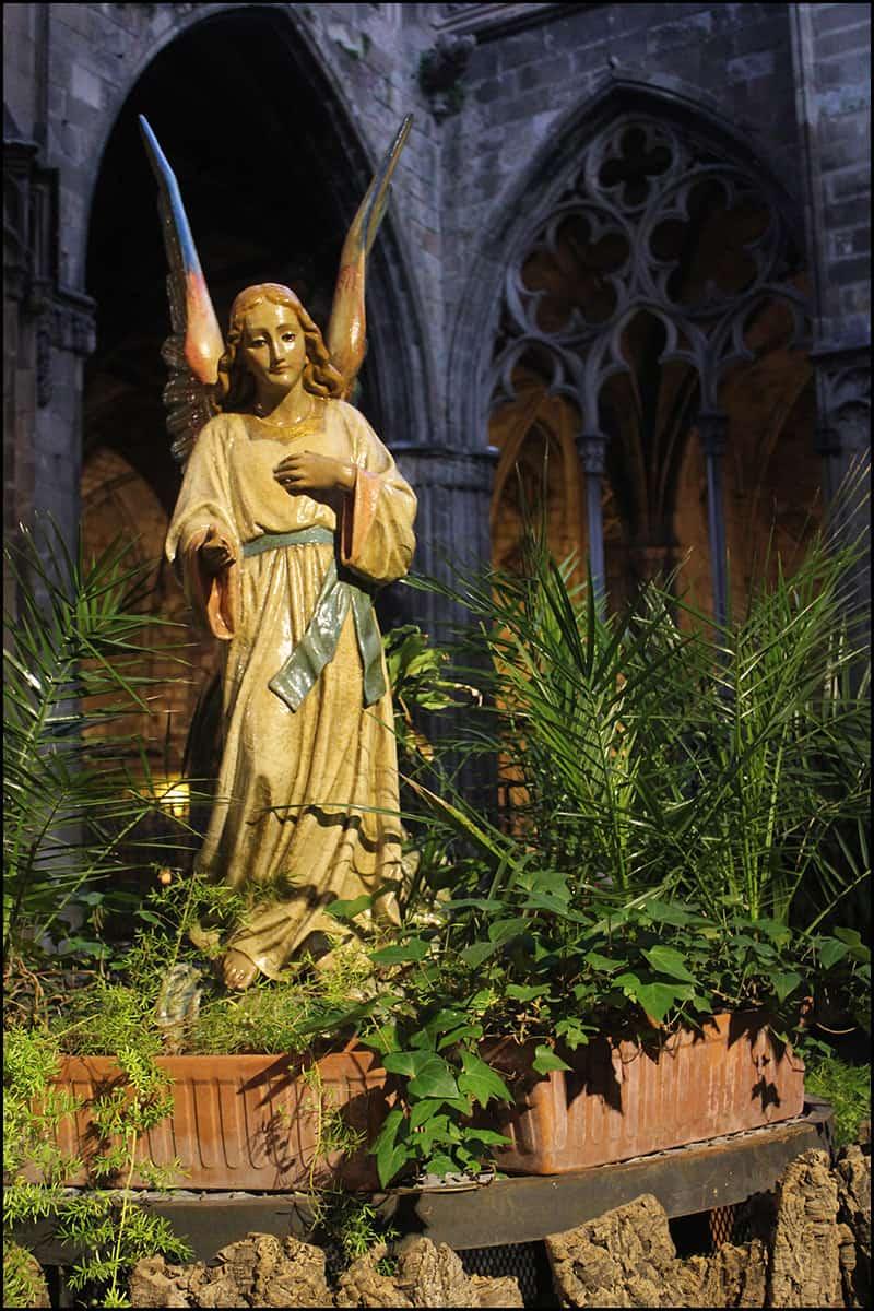 IMG 2476 - Кафедральный собор Барселоны, или 13 белых гусей