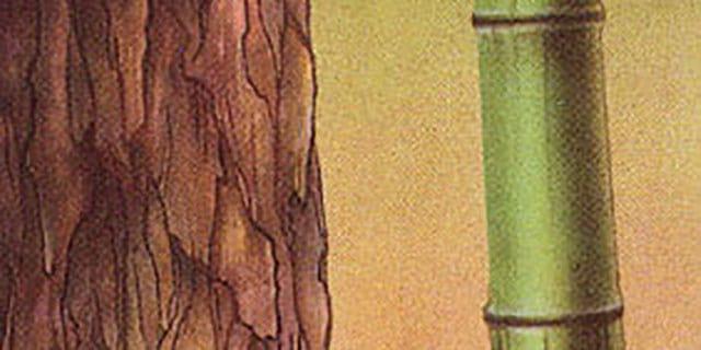"""blog post 19.05.14 - Тренинг - Система""""Дизайн Внутренних Состояний"""". День 032"""