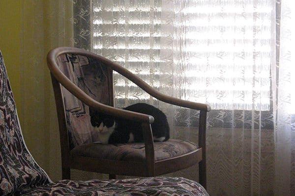 В квартире можно спрятаться и отоспаться